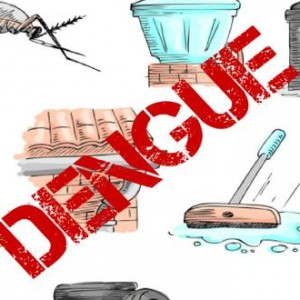 Relief India Trust urges Delhi to gear up for Dengue