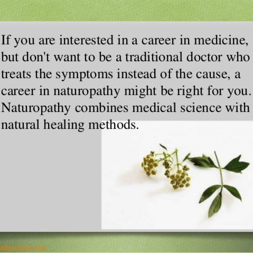 Naturopathy course at AMCC - A bright career option - The Voice of ...