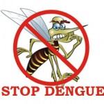 excel dengue