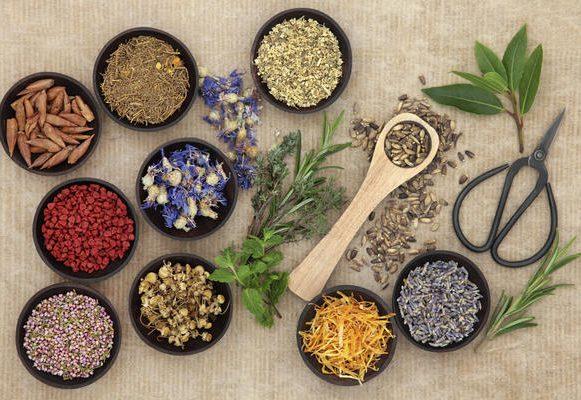 Alternative Medicine vs Allopathic Medicine