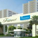 oceanus group project tranquil