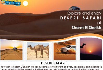 Golden Weeks Desert Safari