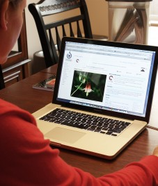'Work from home' is a great option for employees as well as employers