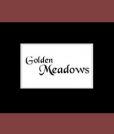 A heavenly lifestyle awaits you at  Golden Meadows by Modi Builders
