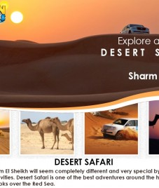 Desert Safari by Golden Weeks: An Epic Arabian Experience