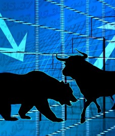 Stock Market Get's a New Bull