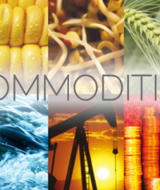 The impact of NSEL crisis on Commodity Market