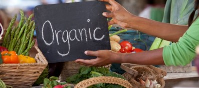 Ravin Jhunjhunwala elucidates the concept of Organic Farming
