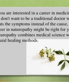 Naturopathy course at AMCC – A bright career option