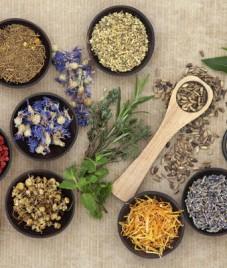 AMCC talks about benefits of Alternative Medicines