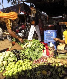 wholesale price index – July wholesale inflation eases to 5-month low of 5.19 percent